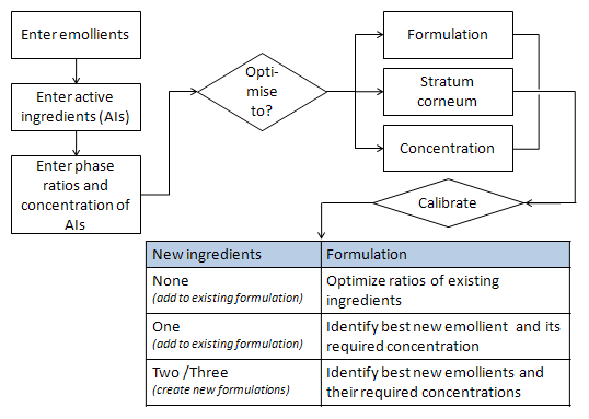 Schematic outline of the program